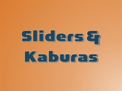 Sliders / Kaburas
